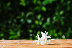 White flower on grass mat Royalty Free Stock Images
