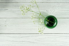 White flower in a green vase on a white background. Furnishings Stock Images