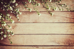White flower on grunge wood board background with space. White flower on grunge wood board background with space Stock Photography