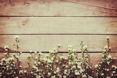 White flower on grunge wood board background with space. White flower on grunge wood board background with space Stock Photo