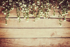 White flower on grunge wood board background with space. stock images