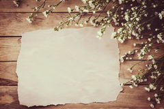 White flower on grunge wood board and paper background with spac. E Royalty Free Stock Image