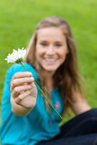 White flower held by a young smiling woman Stock Images