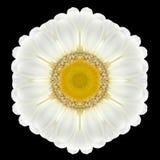 White Flower Mandala Kaleidoscope Isolated on Black Royalty Free Stock Images