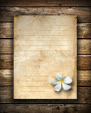 White flower and old grunge letter paper Royalty Free Stock Image