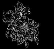 White flower over dark Stock Photos