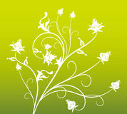 White flower pattern in green background Royalty Free Stock Photos