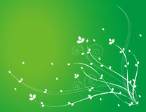 White flower pattern in green background Stock Photos