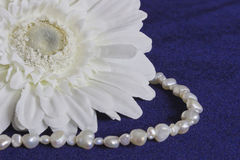 White flower and pearls. On blue background Royalty Free Stock Photography