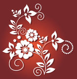White flower on red background Stock Photography