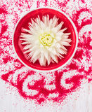 White Flower in red bowl with water and bath salt for spa Stock Photos