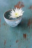 White flower in small cup Royalty Free Stock Photo