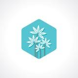 White flower with spa icon Stock Photos