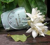 White flower in vase with Good friend are forever sign. White flower in sweet blue garden bucket Stock Photo
