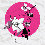 White flower. Vector illustration Royalty Free Stock Photo