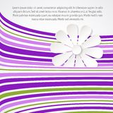 White flower on violet waves. Royalty Free Stock Image