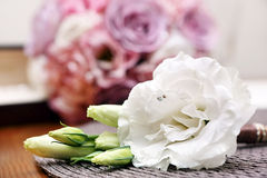 White flower wedding boutonniere for the groom Royalty Free Stock Image