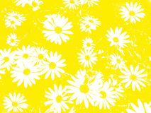 White flowers as a background vector illustration
