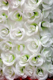 White  flowers background Royalty Free Stock Images