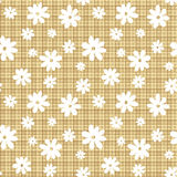 White flowers on a beige wicker background. Royalty Free Stock Photography