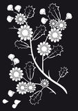 White flowers on a black background. Stylized flowering branches on a black background Royalty Free Stock Photos