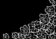 White flowers on a black background. White silhouettes of flowers on a black background Royalty Free Stock Photos