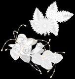 White flowers  on black Stock Image