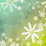 White flowers in blue green old paper background Stock Photos