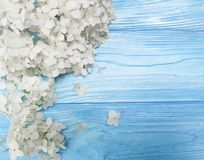 White flowers on blue wooden background. Frame Stock Photos