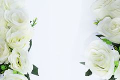 White flowers border with empty space. Photo royalty free stock photos
