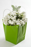 White flowers bouquet Stock Image