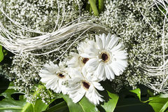White flowers. Bouquet of white flowers on flower arrangement Stock Photography