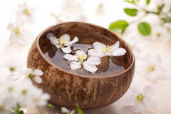 White flowers in bowl for spa Royalty Free Stock Images