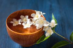 White flowers in a bowl of water. Spa. Royalty Free Stock Photo