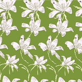 White flowers. On the bright green background royalty free illustration