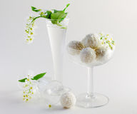 White flowers and candie. White still life with flowers and candie Stock Photography