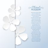 White flowers and copy space. Royalty Free Stock Photos