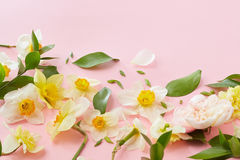 White flowers covering background Royalty Free Stock Images