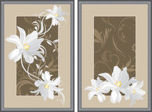 White flowers in decorative gray frame Royalty Free Stock Photography