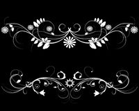 White flowers frame. White flowers frame on a black background Royalty Free Stock Images