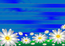 White flowers on the grass on a wooden background from blue boards. Vector illustration. Vectors white flowers on the grass on a wooden background from blue vector illustration