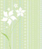 White Flowers on Green Royalty Free Stock Photo