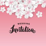 White flowers Invitation Stock Images