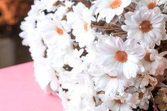 White flowers in a large bouquet on a pink surface stock images