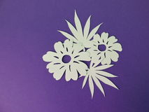 White flowers and leaves . Paper cutting. Stock Photography