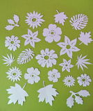 White flowers and leaves pattern  . Paper cutting. Royalty Free Stock Photo