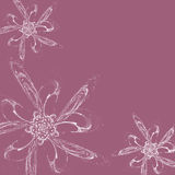 White flowers on lilac background. Computer generated illustration of white flowers on lilac background Stock Images