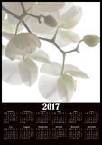 White flowers of orchid 2017 calendar design printable. Illustration Stock Photography