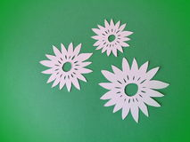 White flowers. Paper cutting. Stock Images