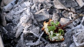 White flowers rise again from hot charcoal concept